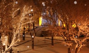 PlugIn, sorgt für Schnee